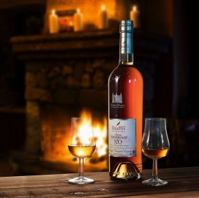 Frapin Château Fontpinot XO – «Cognac of the Year 2021»!